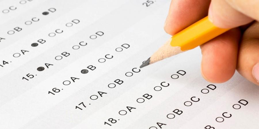 Examen test inburgering Preparation courses